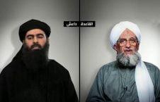 القاعده داعش 226x145 - تلاش القاعده برای بازپس گیری جایگاه خود از داعش