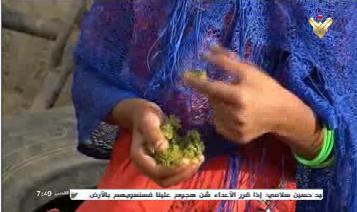 برگ درخت 2 - تصاویر/ اطفال یمن از فرط گرسنگی برگ درخت میخورند!
