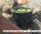 تصاویر/ اطفال یمن از فرط گرسنگی برگ درخت میخورند!