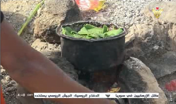 برگ درخت - تصاویر/ اطفال یمن از فرط گرسنگی برگ درخت میخورند!