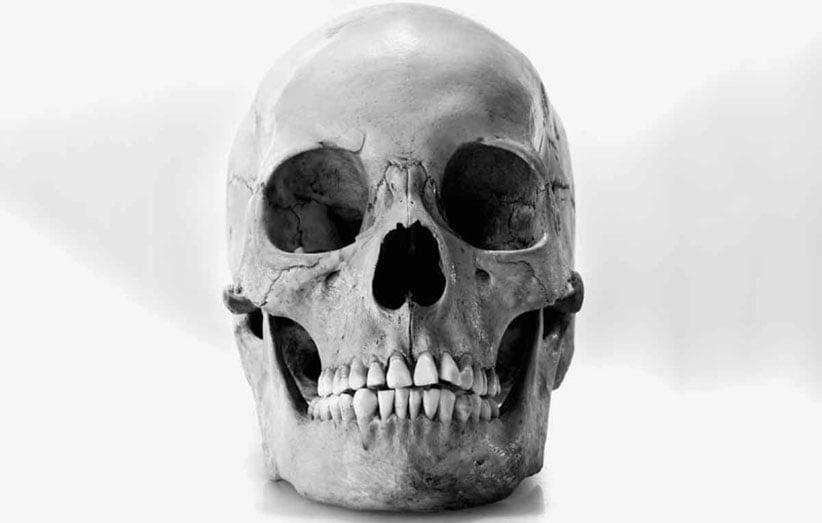 جمجمه - قدیمی ترین فسیل جمجمه انسان کشف شد