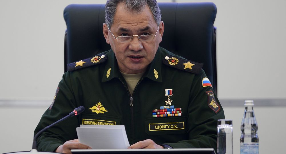 سرگی شایگو - تداوم همکاریهای نظامی-تخنیکی روسیه برای افزایش توان دفاعی مصر