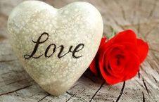 عشق 226x145 - تصویر/ بوسه روباه!