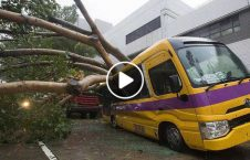 ویدیو وقوع طوفان مرگبار چین 226x145 - ویدیو/ وقوع طوفانی مرگبار در چین