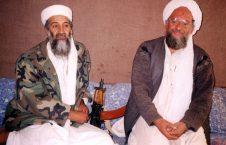 بن لادن 226x145 - از تاسیس القاعده در پشاور تا مرگ بن لادن در ایبت آباد!