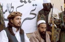 تحریک طالبان 226x145 - امریکا: لشکر طیبه و تحریک طالبان پاکستان در لست گروه های تروریستی قرار دارند