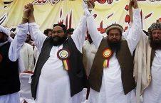 علمای پاکستانی 226x145 - وعده علمای پاکستانی به شورای عالی صلح