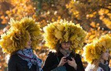 پاییز روسیه3 226x145 - تصاویر/ موسم زیبای پاییز در روسیه