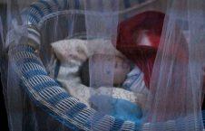 یتیم خانههای عراق10 226x145 - تصاویر/ فرزندان داعش در یتیم خانههای عراق!