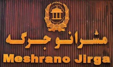 مشرانوجرگه - انتقاد مشرانوجرگه از دخالت یوناما در امور انتخاباتی افغانستان
