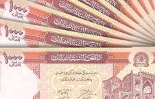 افغانی 226x145 - با معرفی این افراد 50 هزار افغانی پاداش بگیرید!