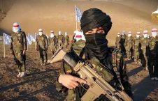 کشته شدن ۱۲ طالب مسلح در جنوب کشور