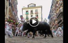 ویدیو حمله گاو خشمگین مردم 226x145 - ویدیو/ حمله گاو خشمگین به مردم