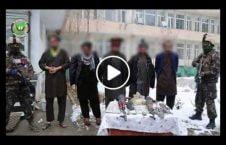 ویدیو دستگیر گروه اختطاف غرب کابل 226x145 - ویدیو/ لحظه دستگیری گروه ۴ نفری اختطاف گران در غرب کابل