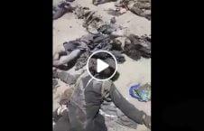 ویدیو طالبان قول اردوی ۲۰۹ شاهین 226x145 - ویدیو/ اجساد طالبان پاکستانی کشته شده توسط قول اردوی ۲۰۹ شاهین