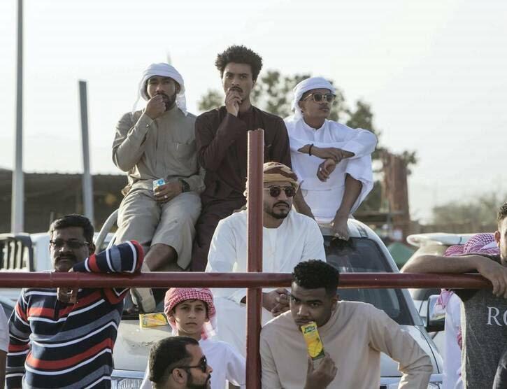 گاو بازی امارات 5 - تصاویر/ تفریح عجیب مردم امارات