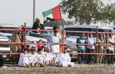 گاو بازی امارات 9 226x145 - تصاویر/ تفریح عجیب مردم امارات