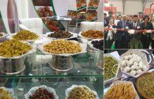 نمایشگاه بینالمللی دوبی 4 226x145 - تصاویر/ نمایشگاه بینالمللی زراعتی افغانستان در دوبی