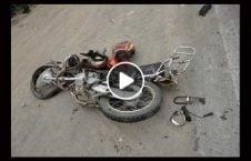 ویدیو تصادف موترسایکل گاو مقدس هند 226x145 - ویدیو/ تصادف مرگبار موترسایکل سوار با گاو مقدس در هند