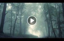 ویدیو روح سرگردان جنازه صاحب نشان 226x145 - ویدیو/ روح سرگردان جنازه صاحبش را نشان داد