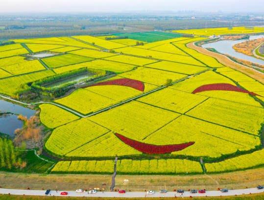جشن گل چین 1 - تصاویر/ جشن گلها در چین