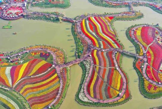 جشن گل چین 5 - تصاویر/ جشن گلها در چین