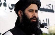 ذبیحالله مجاهد 226x145 - سخنگوی طالبان گفتگوهای اخیر در مسکو را موفق می داند