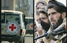 صلیب سرخ 226x145 - انتقاد طالبان از عملکرد اداره جهانی صلیب سرخ