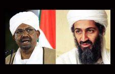 عمرالبشیر بنلادن 226x145 - عمرالبشیر بنلادن را به افغانستان فرستاد
