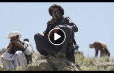 ویدیو افشاگری عضو طالبان 226x145 - ویدیو/ افشاگری يک عضو پيشين طالبان