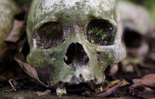 قبرستان6 226x145 - سنت ترسناک قریه نشینان اندونزیا برای مردگان + تصاویر(18+)