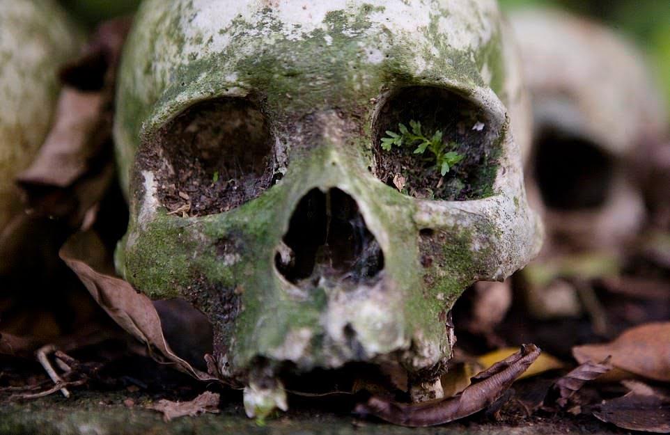 قبرستان6 - سنت ترسناک قریه نشینان اندونزیا برای مردگان + تصاویر(18+)