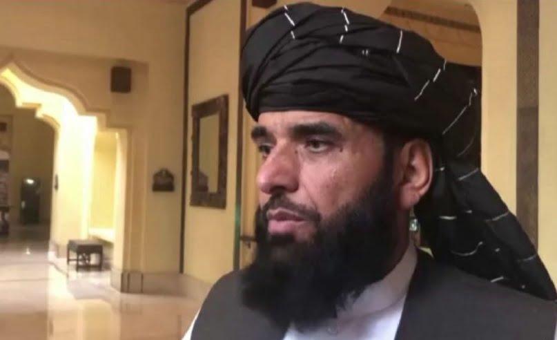 سهیل شاهین: د کابل حکومت سره خبرې نه کوو
