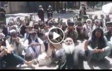 ویدیو نفرین معترضان رییس گمرک هرات 226x145 - ویدیو/ نفرین معترضان علیه رییس گمرک ولایت هرات