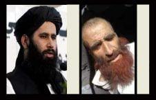 ذبیح الله مجاهد 226x145 - ذبیح الله مجاهد: ملاامام قاتل را اعدام نکرده ایم!
