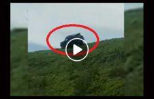 ویدیو سقوط وحشتناک موتر جنگل 226x145 - ویدیو/ سقوط وحشتناک موتر به پایین جنگل