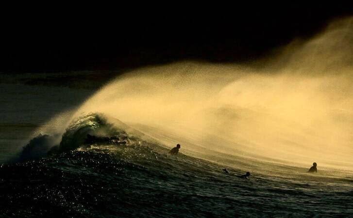 موج سواری2 - تصاویر/ موج سواری در سواحل آسترالیا