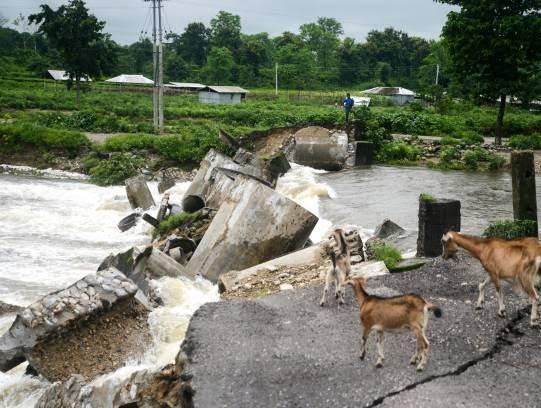 هند سیلاب 6 - تصاویری از سیلاب های شدید در هند