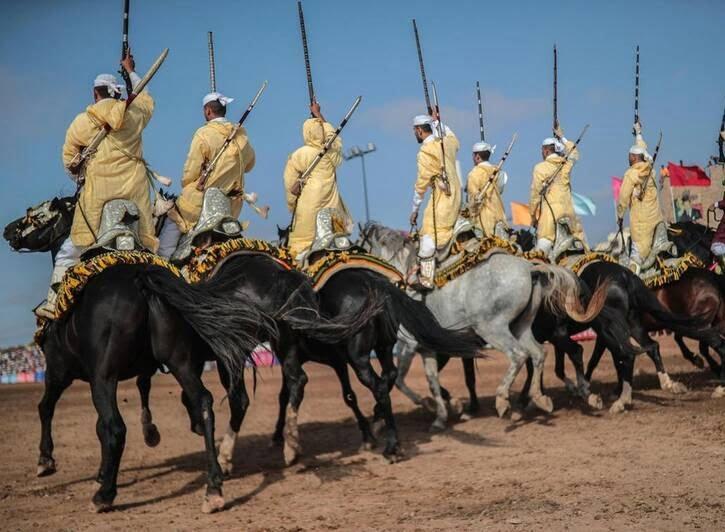 اسب2 - تصاویری دیدنی از جشنواره اسب سواری