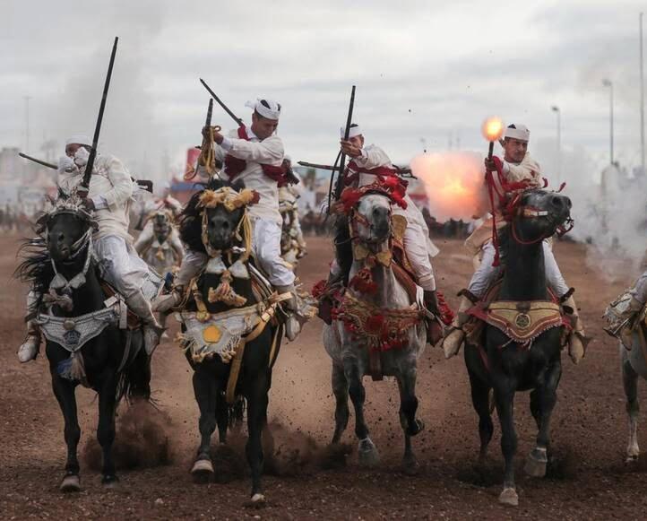 اسب3 - تصاویری دیدنی از جشنواره اسب سواری