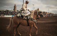 اسب5. 226x145 - تصاویری دیدنی از جشنواره اسب سواری
