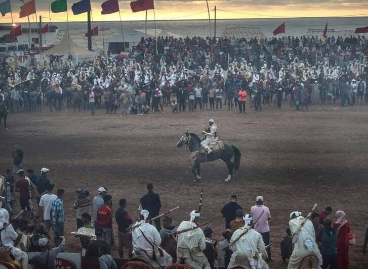اسب6 - تصاویری دیدنی از جشنواره اسب سواری