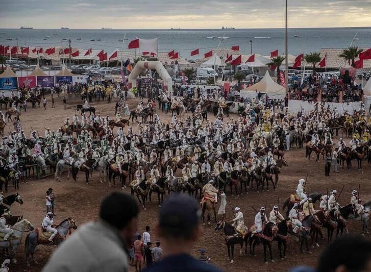 اسب7 - تصاویری دیدنی از جشنواره اسب سواری