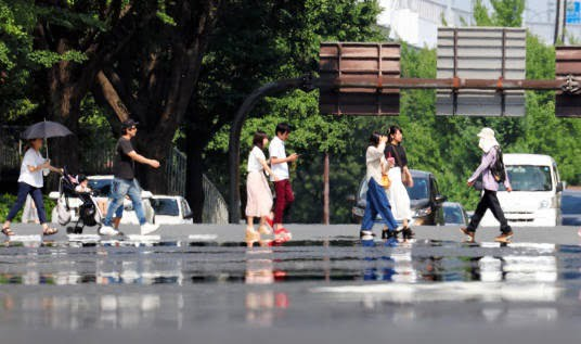 جاپان گرما 2 - تصاویر/ تلفات باشنده گان جاپان بر اثر گرما