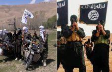 طالبان داعش1 226x145 - استخدام جنگجویان طالب ناراضی از صلح توسط داعش