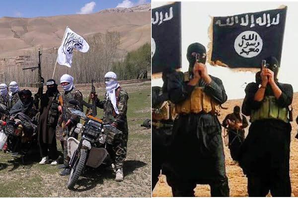 طالبان داعش1 - استخدام جنگجویان طالب ناراضی از صلح توسط داعش