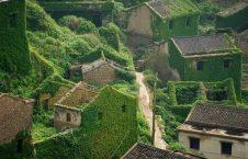قریه چین 4 226x145 - سرسبزترین قریه دنیا + تصاویر