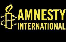 عفو بینالملل 226x145 - انتقاد عفو بین الملل از نحوه تعامل مقامات مصر با روزنامه نگاران