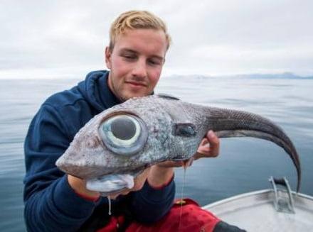 ماهی عجیب الخلقه 1 - صید ماهی عجیب الخلقه در سواحل ناروی + تصاویر
