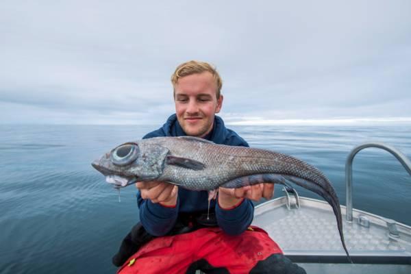 ماهی عجیب الخلقه 2 - صید ماهی عجیب الخلقه در سواحل ناروی + تصاویر